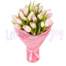 "Букет ""Розовые тюльпаны 25 шт"""